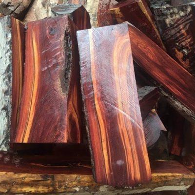 các loại gỗ nhóm 2